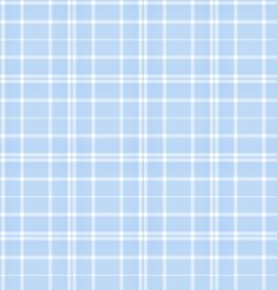 bluewhiteplaid.jpg
