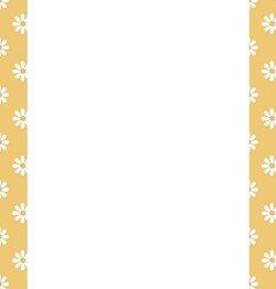 golddaisy_border.jpg